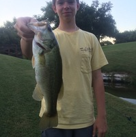 Highland Park Ponds Fishing Report 06/30/2016