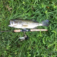Other Freshwater Fishing Report 09/03/2017