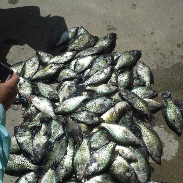 Granger Lake Fishing Report 03/18/2013
