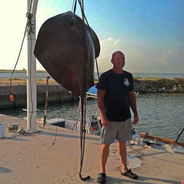 flounder fishing report seawolf park
