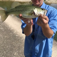 Frio River Fishing Report 09/14/2016