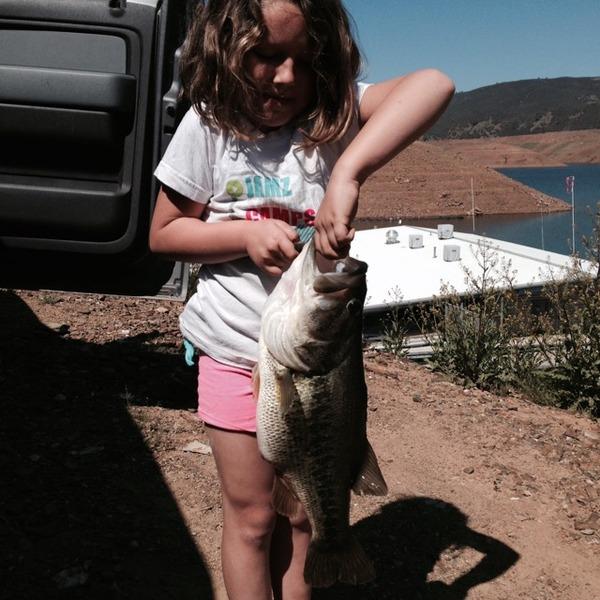 Lake mcclure fishing reports fishingscout mobile app for Lake silverwood fishing report