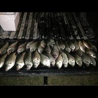 Lake Jacksonville Fishing Report 05/09/2013