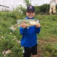 Flower Mound Ponds Fishing Report 04/17/2017