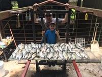 Lake Livingston Fishing Report 06/25/2017