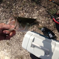 Lake Waxahachie Fishing Report 07/31/2013