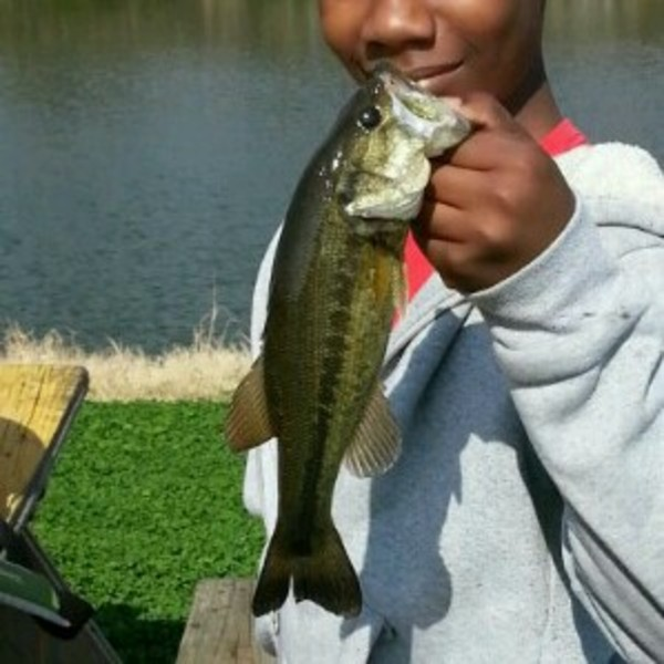 LNVA Canal and Ponds Fishing Report 07/04/2014