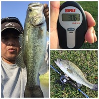 Missouri City Ponds Fishing Report 03/25/2016