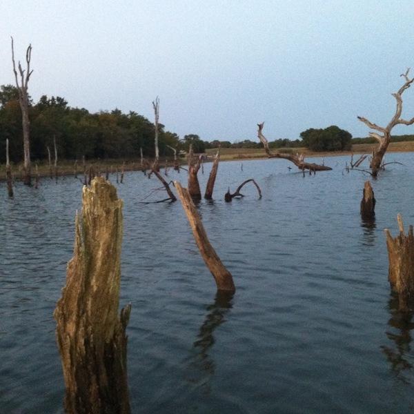 Decatur Ponds Fishing Report 08/11/2012