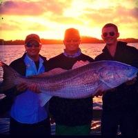 New smyrna beach fishing reports fishingscout mobile app for New smyrna beach fishing report