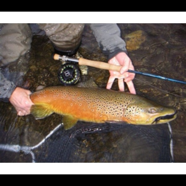 Other Freshwater Fishing Report 07/28/2013