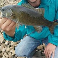 Chatfield Lake Fishing Report 08/15/2017