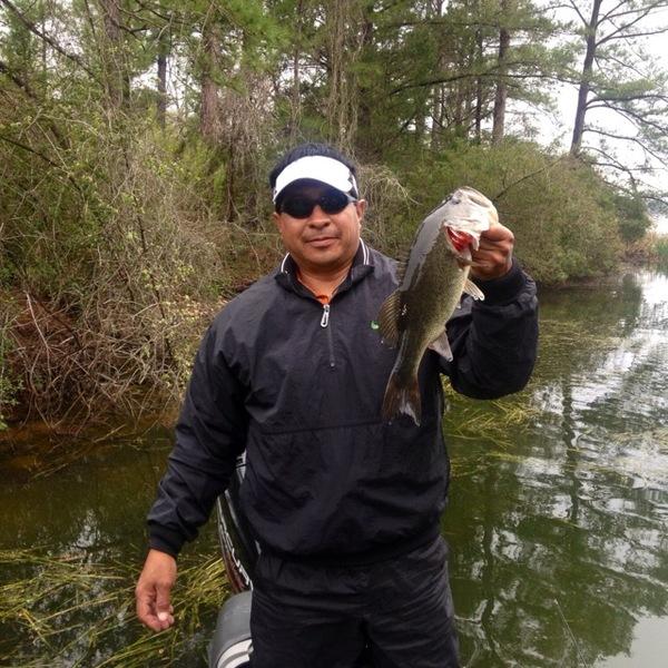 Lake Bastrop Fishing Report 03/20/2013