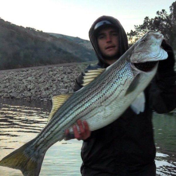 Lake del valle fishing reports fishingscout mobile app for Shaver lake fishing report
