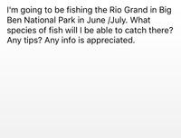 Rio Grande River Fishing Report 01/20/2016