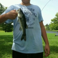 Sealy Ponds Fishing Report 07/13/2015