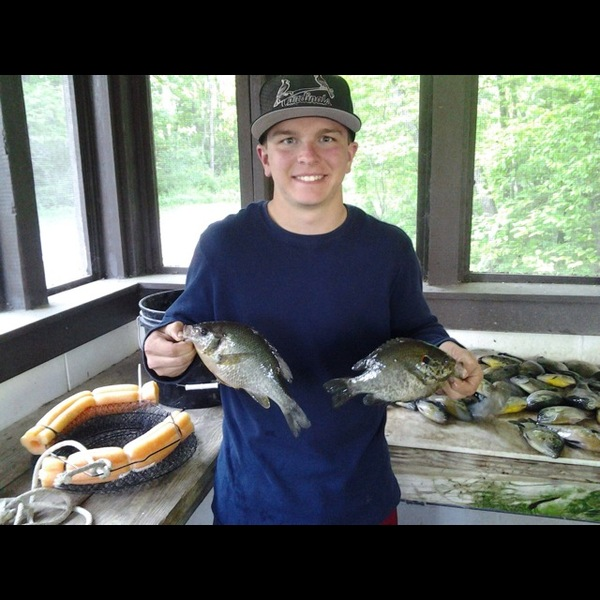 Shakamak lake fishing reports fishingscout mobile app for Indiana fishing reports