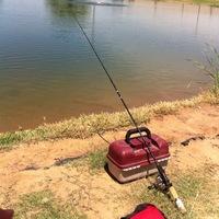 Lake Alan Henry Fishing Report 06/26/2014