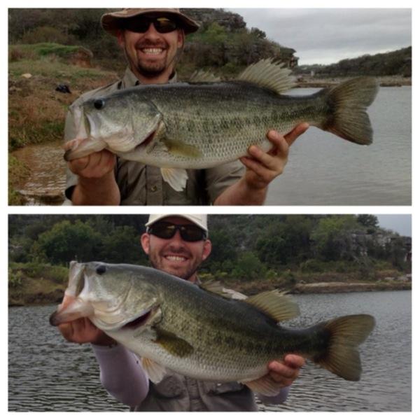 Lake Travis Fishing Report 11/06/2013
