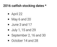 Mesquite Ponds Fishing Report 06/24/2016