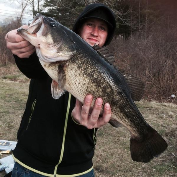 Largemouth bass massabesic lake nh fishingscout for Bass fishing nh