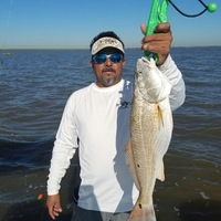 San Leon Ponds Fishing Report 04/23/2016