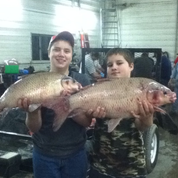 rend lake fishing reports fishingscout mobile app