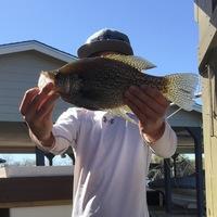 Lake Marble Falls Fishing Report 03/13/2016