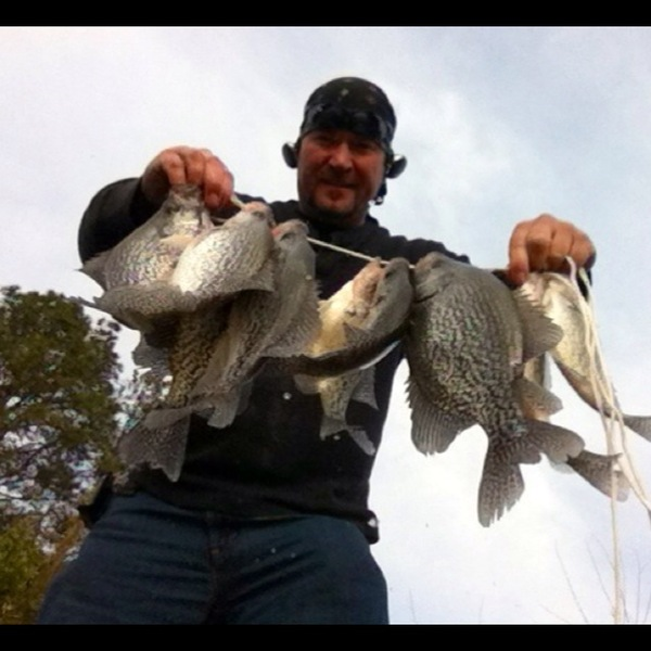 black crappie h neely henry lake al fishingscout