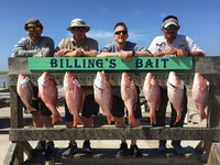 Offshore Fishing Report 01/30/2017