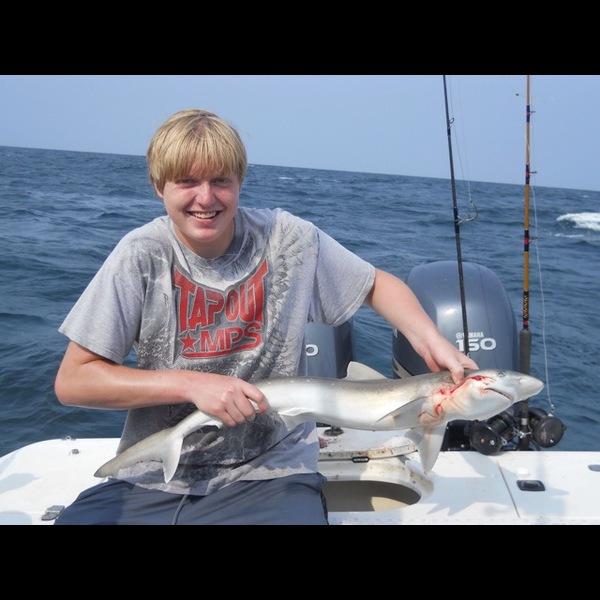 Atlantic sharpnose shark topsail beach nc fishingscout for Topsail beach fishing report