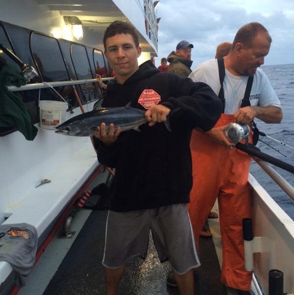 Skipjack atlantic ocean near longport nj fishingscout for Ocean city nj fishing report