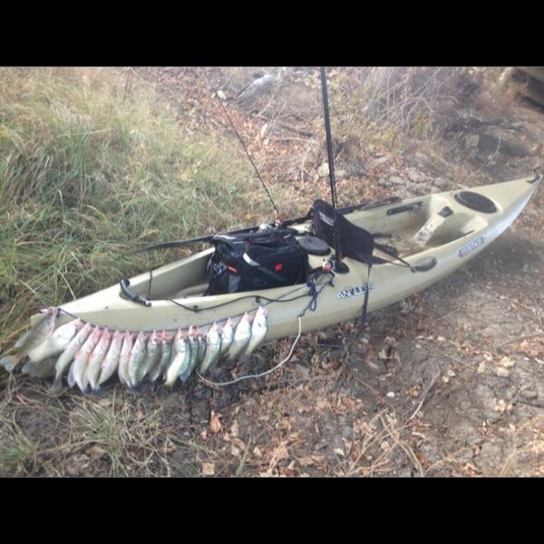 Mansfield Ponds Fishing Report 12/10/2013