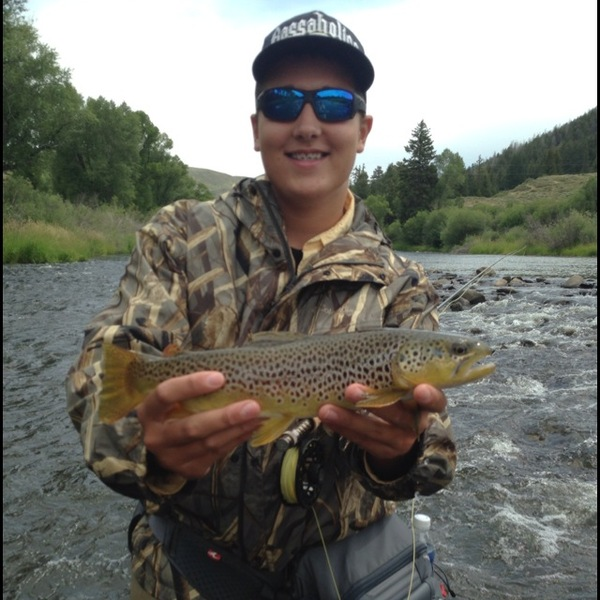 Brown trout colorado river co fishingscout for Colorado fishing report