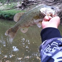 Leon River Fishing Report 10/26/2013