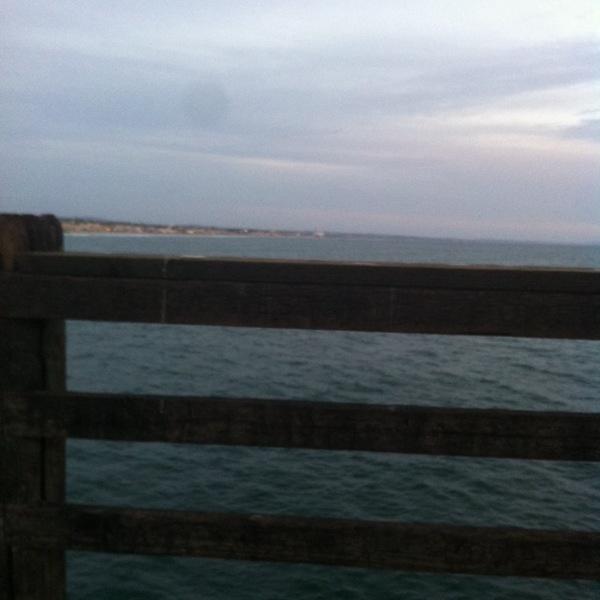 Bite alert ocean beach ca fishingscout for Oceanside pier fishing reports