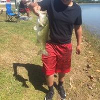 Aubrey Ponds Fishing Report 05/31/2017