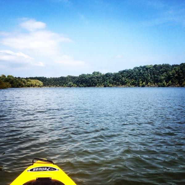 Barren river lake fishing reports fishingscout mobile app for Kentucky lake fishing