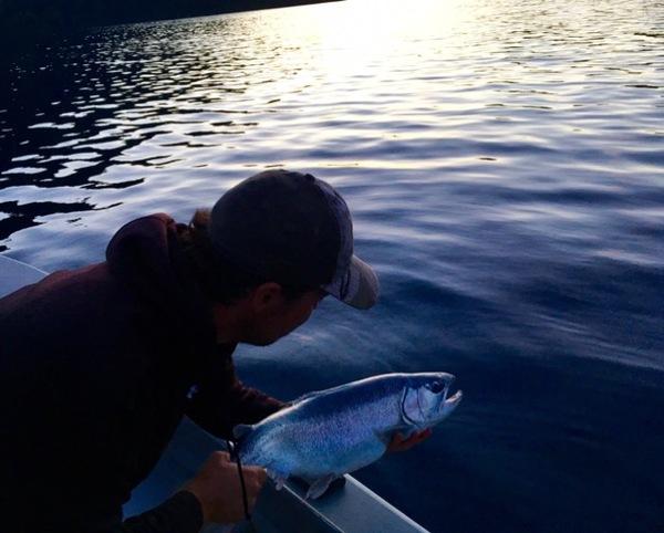 Rainbow trout lake crescent wa fishingscout for Fishing report washington