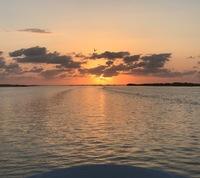 Lower Laguna Madre / South Padre I. Fishing Report 05/22/2017