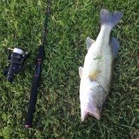 Brays Bayou Fishing Report 04/06/2017