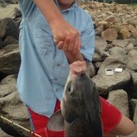 Wright Patman Lake Fishing Report 07/23/2015
