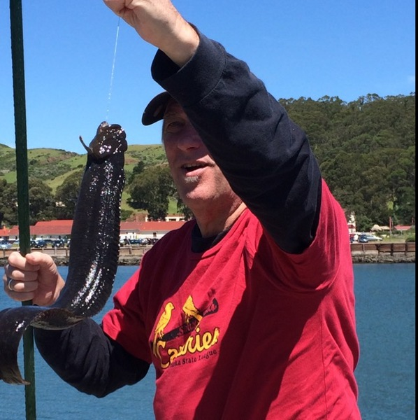 Eel san francisco bay ca fishingscout for San francisco fishing report