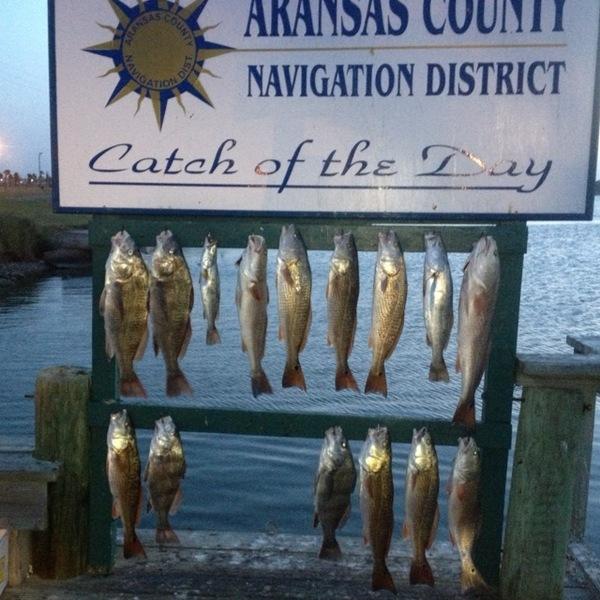 Rockport Fishing Report 06/26/2013