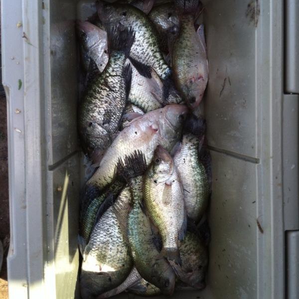 Lake Kickapoo Fishing Report 04/22/2012