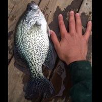 Oakwood Ponds Fishing Report 01/03/2016