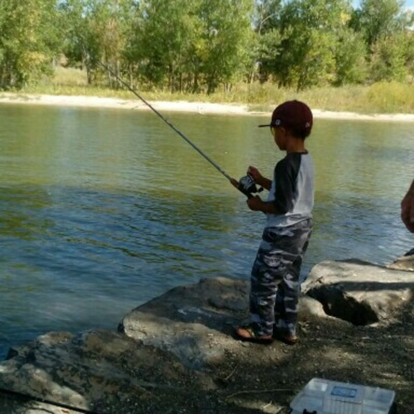 Cherry creek reservoir fishing reports fishingscout for Cherry creek reservoir fishing