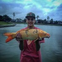 Spring Creek Fishing Report 12/07/2015