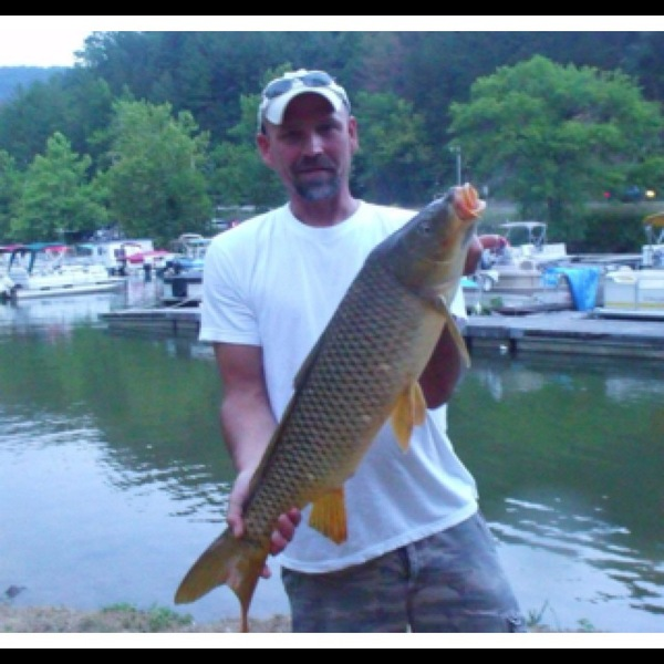 Dewey lake fishing reports fishingscout mobile app for Taylorsville lake fishing report