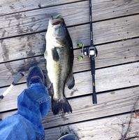 Lake Waxahachie Fishing Report 06/08/2015